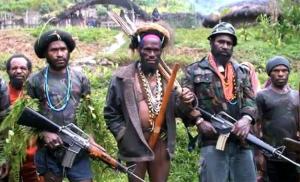 KKB Bakar Rumah Kepala Suku dan Fasilitas Pendidikan di Distrik Beoga, Papua