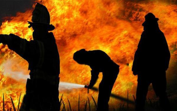 Wali Kota Pontianak Segel 5 Lahan Terbakar, Ancam Tindak Tegas Pemilik